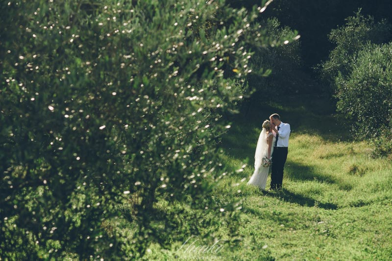olive trees tuscany wedding ideas